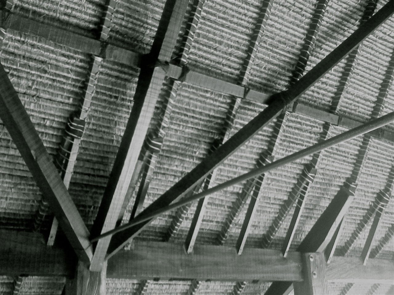 Internal roof of villa